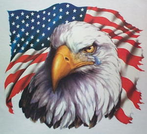 [Image: American_Flag_%26_Crying_Bald_Eagle_Patriotic.jpg]
