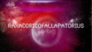 Raxacoricofallapatorius.png