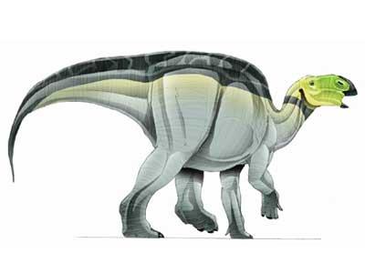 Hadrosaurus-1.jpg (400×300)