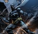 Bruce Wayne (Tierra Prime)