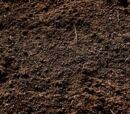 Dirt Nature stuff ep4