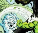 The Incredible Hulk and Wolverine Vol 1 1/Images