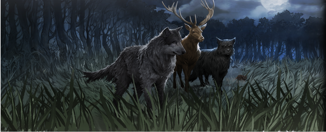 Moony, Wormtail, Padfoot and Prongs - Pottermore Wiki
