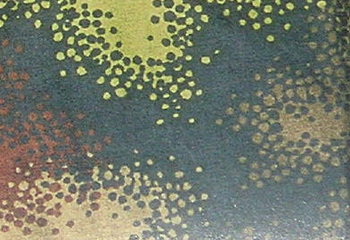 tvserials---camouflage wikia com A TACS AU Arid Urban Camo