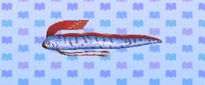 Oarfish - Animal Crossing: New Leaf Wiki Oarfish Animal Crossing