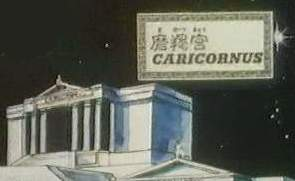 10° Casa - Capricórnio Casa_de_capricornio