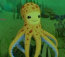Yellow Octopuses
