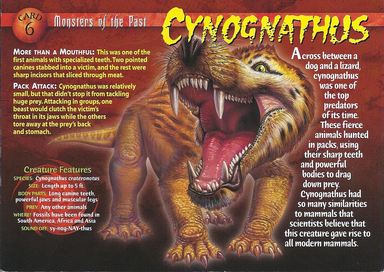 5 Ancient Mammal-like Reptiles