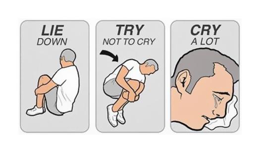 [Forme] Seth Rollins blessé, un nouveau champion sera couronné aux Survivor Series ! Lie_down_try_not_to_cry_cry_a_lot_cleaned_525