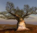 Blbový strom