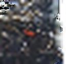 Emoticon - Battra Larva.png
