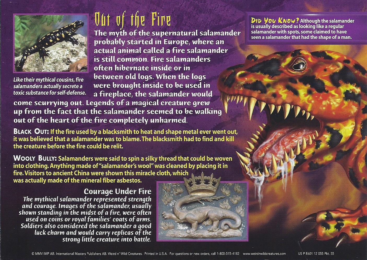 Salamander Wierd N Wild Creatures Wiki