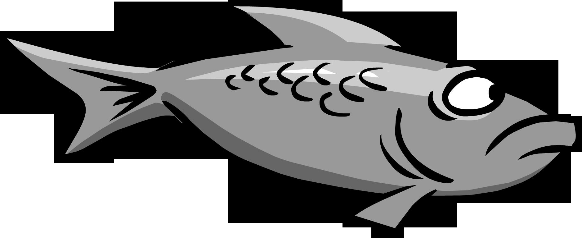 gray fish club penguin wiki the free  editable free penguin clipart free clipart penguin pictures