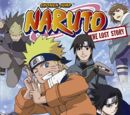 Naruto - Mission: Protect the Waterfall Village!