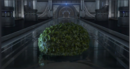 CBLarge Topiary Bush.png