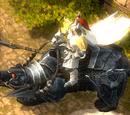 Varustettu mustakarhu (nopea ratsu)