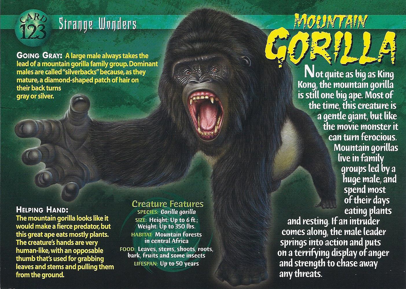 Mountain gorilla strange wonders card 123 front
