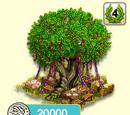 Alter Baum Festschmuck