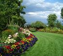 The Garden of Bacchus