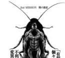 Segunda Misión