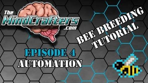 Bee Breeding Tutorial - Episode 4 Automation