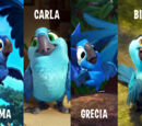 Lordofduel/Before Rio 2 Hits Theaters: Roma, Achez, and Grecia? Are they real?