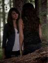Katherine-pierce-and-bebe-v-neck-lace-top-gallery.png