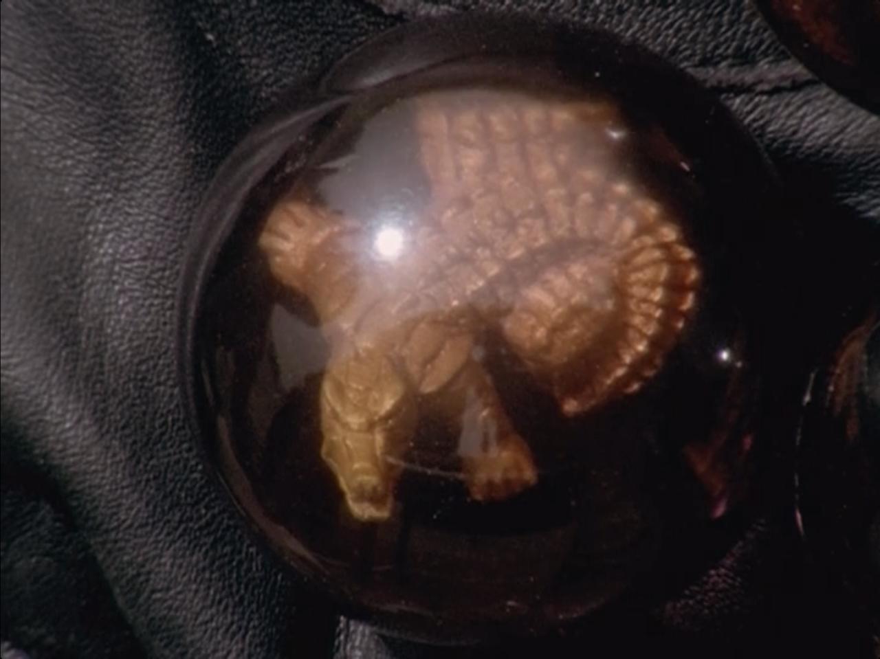 Image - Alligator Dark Wild Zord Crystal.png - RangerWiki ...