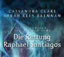 Die Rettung des Raphael Santiago
