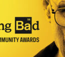 Matt Hadick/Breaking Bad Wikia Awards