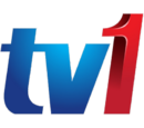 Television channels in Malaysia