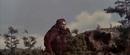 King Kong vs. Godzilla - 36 - Look At That Lizard.png