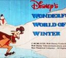 Disney's Wonderful World of Winter