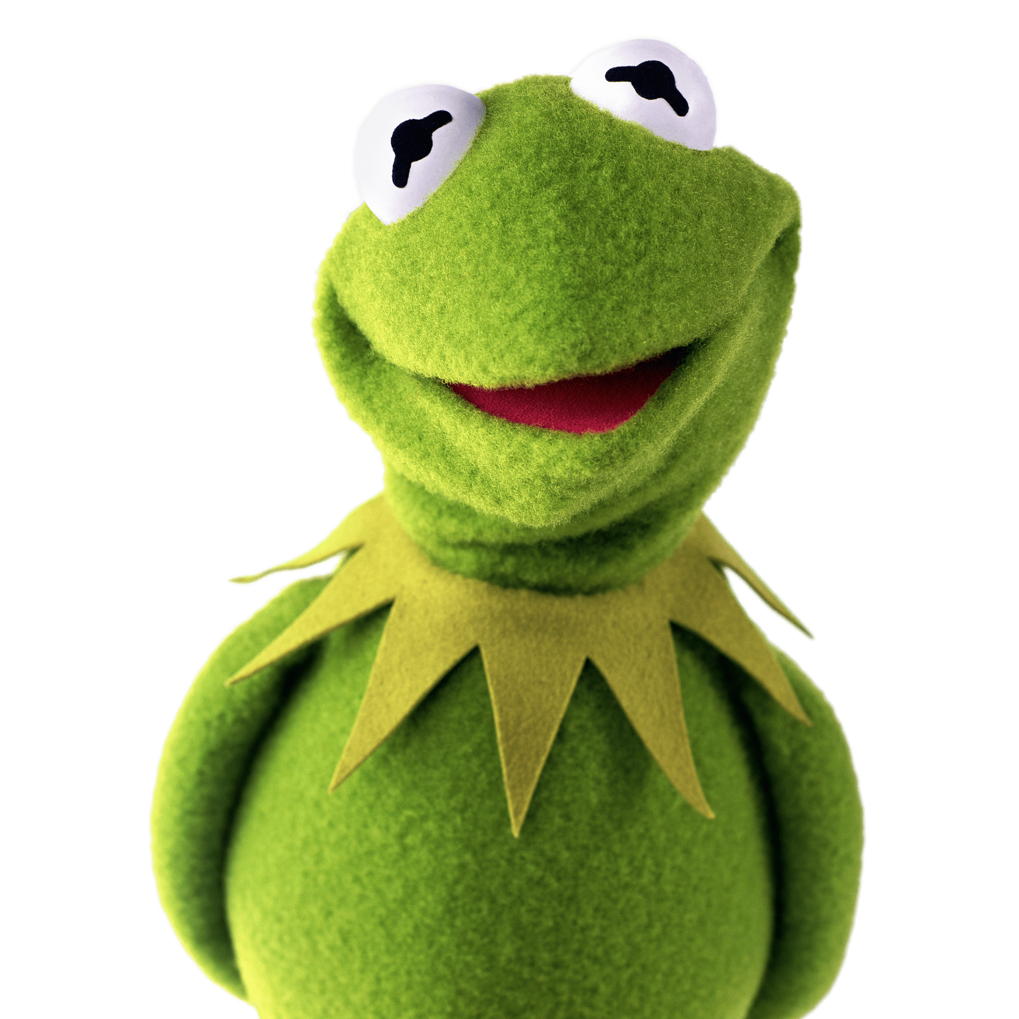 Kermit the Frog The Muppets Kermit The Frog