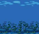 Seaweed Garden