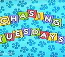 Chasing Tuesdays