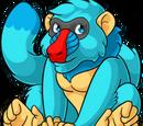 Blue Pet Images