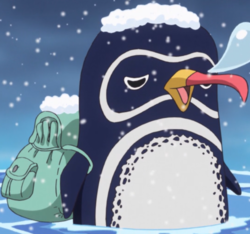 http://img2.wikia.nocookie.net/__cb20131215043155/onepiece/images/thumb/d/d6/Camel_Anime_Infobox.png/250px-Camel_Anime_Infobox.png