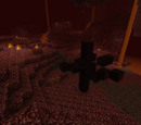 Nether Biomes