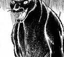Panther Zora (Manga)