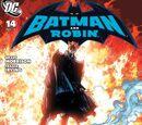 Batman and Robin Vol.1 14