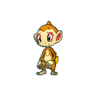 Chimchar XY