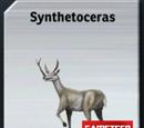 Synthetoceras