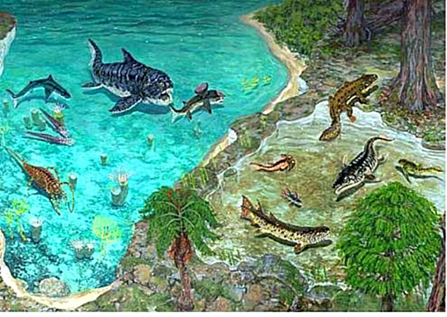 The Devonian is a geologic period of the Paleozoic era  It is named    Devonian Amphibians