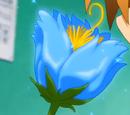 Flor Kenja