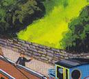 The Diesel Shunter