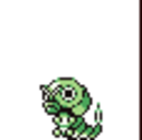 Caterpie V.png