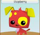 Stopberry