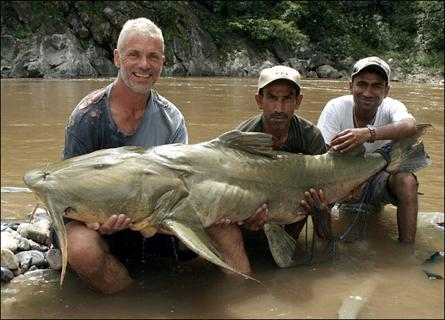 River Monsters Lair of Giants River Monsters Lair of Giants