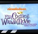 Ein Cosmo & Wanda Movie: Werd' erwachsen Timmy Turner!